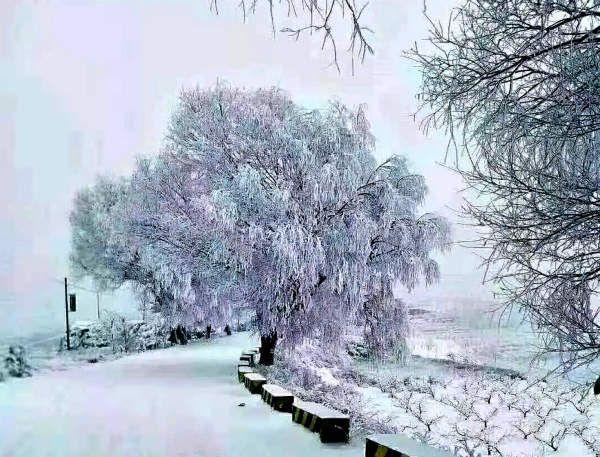 王辉斌|一场雪景,回..